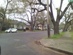 A street within the Jefferson Westside Neighbors.