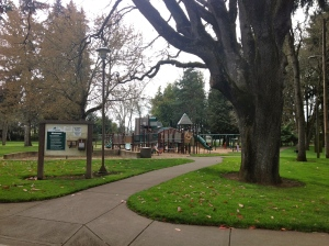 Emerald Park is composed of a large playground, picnic areas, walking trails, and a skate park
