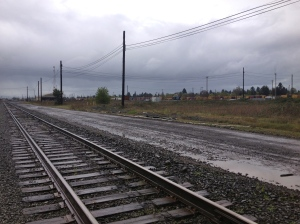 These railroad tracks serve as the boundary between the River Road Community and the Trainsong Neighborhood